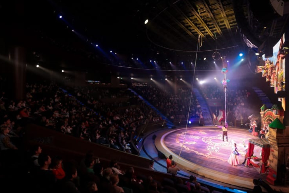 Театрально-цирковое шоу Буратино